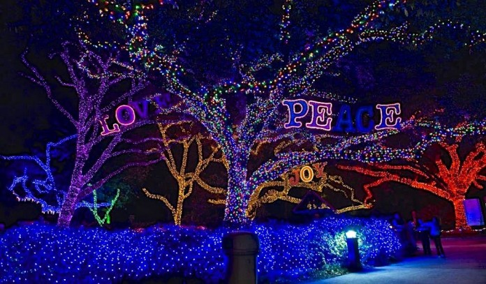 2015 christmas lights around houston texas amy craft striving to be your first choice - Christmas In Houston 2015